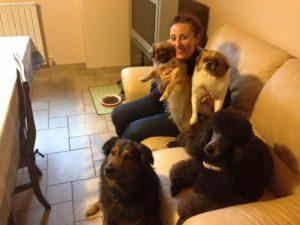 I cani salvano la vita